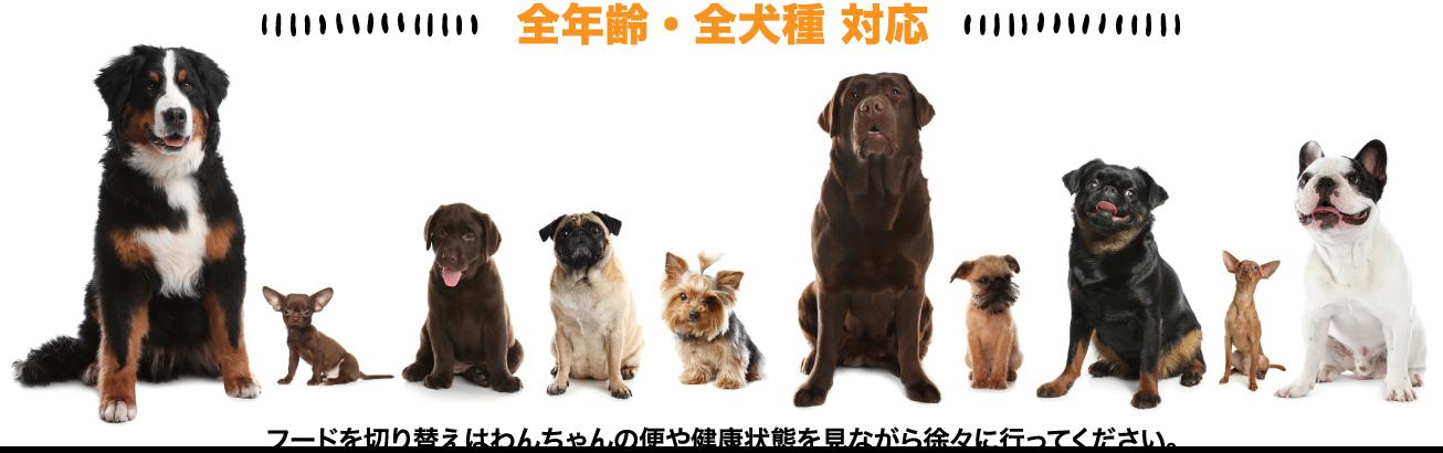 全年齢・全犬種 対応、                 フードを切り替えはわんちゃんの便や健康状態を見ながら徐々に行ってください。